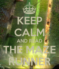 Poster: KEEP CALM AND READ THE MAZE RUNNER