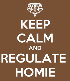 Poster: KEEP CALM AND REGULATE  HOMIE