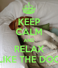 Poster: KEEP CALM AND RELAX LIKE THE DOG