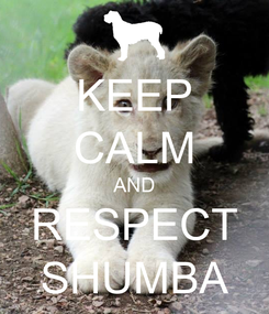 Poster: KEEP CALM AND RESPECT SHUMBA
