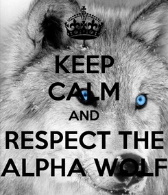 Poster: KEEP CALM AND RESPECT THE ALPHA WOLF