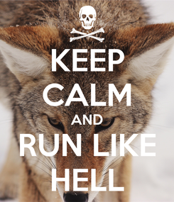 Poster: KEEP CALM AND RUN LIKE HELL