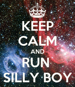 Poster: KEEP CALM AND RUN  SILLY BOY