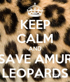 Poster: KEEP CALM AND SAVE AMUR LEOPARDS