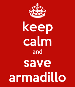 Poster: keep calm and save armadillo