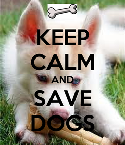 Poster: KEEP CALM AND SAVE DOGS