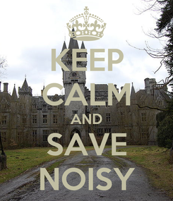 Poster: KEEP CALM AND SAVE NOISY