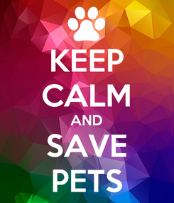 Poster: KEEP CALM AND SAVE PETS