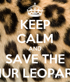 Poster: KEEP CALM AND SAVE THE AMUR LEOPARDS