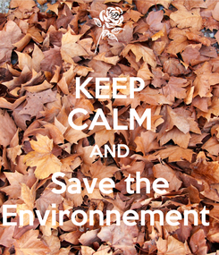 Poster: KEEP CALM AND Save the Environnement