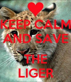 Poster: KEEP CALM AND SAVE  THE LIGER