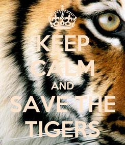 Poster: KEEP CALM AND SAVE THE TIGERS