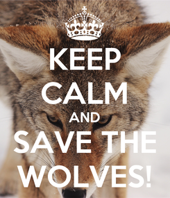 Poster: KEEP CALM AND SAVE THE WOLVES!