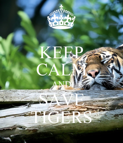 Poster: KEEP CALM AND SAVE TIGERS