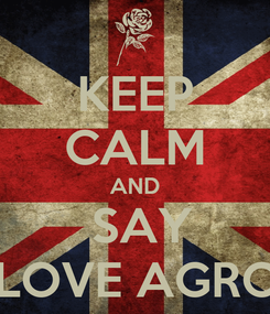 Poster: KEEP CALM AND  SAY  I LOVE AGRON