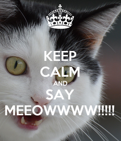 Poster: KEEP CALM AND SAY MEEOWWWW!!!!!