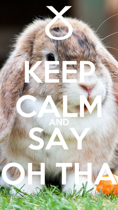 Poster: KEEP CALM AND SAY OH THA