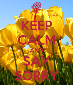 Poster: KEEP CALM AND SAY SORRY