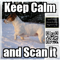 Poster: Keep Calm and Scan it