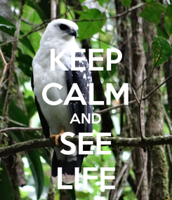 Poster: KEEP CALM AND SEE LIFE