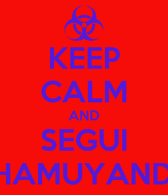 Poster: KEEP CALM AND SEGUI CHAMUYANDO