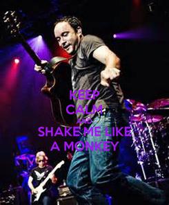 Poster: KEEP CALM AND SHAKE ME LIKE A MONKEY