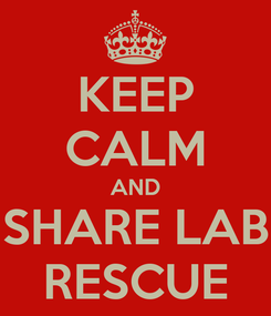 Poster: KEEP CALM AND SHARE LAB RESCUE
