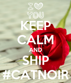 Poster: KEEP CALM AND SHIP #CATNOIR