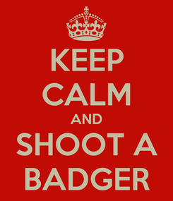 Poster: KEEP CALM AND SHOOT A BADGER