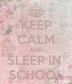 Poster: KEEP CALM AND SLEEP IN  SCHOOL