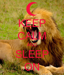 Poster: KEEP CALM AND SLEEP ON