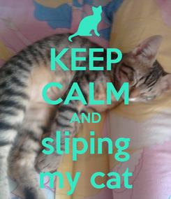 Poster: KEEP CALM AND sliping my cat