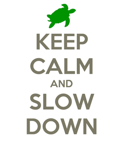 Poster: KEEP CALM AND SLOW DOWN