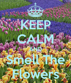 Poster: KEEP CALM AND Smell The Flowers