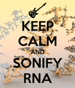Poster: KEEP CALM AND SONIFY RNA