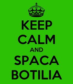 Poster: KEEP CALM AND SPACA BOTILIA