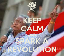 Poster: KEEP CALM AND SPARK A REVOLUTION
