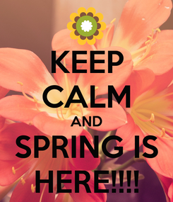 Poster: KEEP CALM AND SPRING IS HERE!!!!