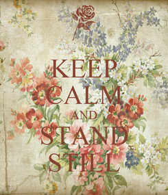 Poster: KEEP CALM AND STAND STILL