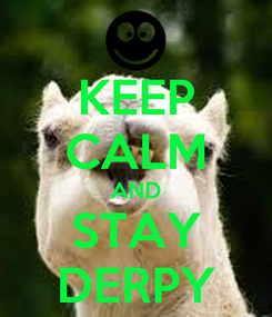 Poster: KEEP CALM AND STAY DERPY