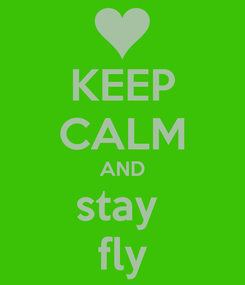 Poster: KEEP CALM AND stay  fly