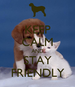 Poster: KEEP CALM AND STAY FRIENDLY