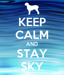 Poster: KEEP CALM AND STAY SKY