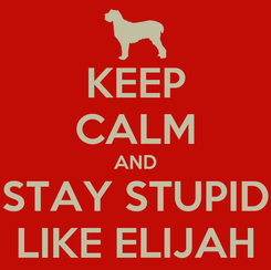 Poster: KEEP CALM AND STAY STUPID LIKE ELIJAH