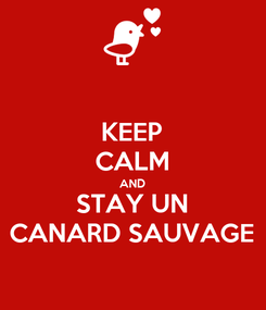 Poster: KEEP CALM AND STAY UN CANARD SAUVAGE