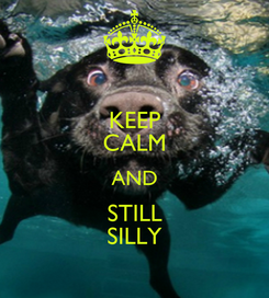 Poster: KEEP CALM AND STILL SILLY