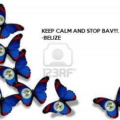 Poster: KEEP CALM AND STOP BAV!!!.