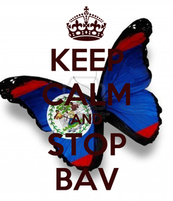 Poster: KEEP CALM AND STOP BAV
