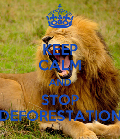 Poster: KEEP CALM AND STOP DEFORESTATION