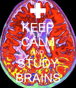 Poster: KEEP CALM AND STUDY BRAINS